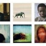 Logran revelar las imágenes que reproduce la mente humana