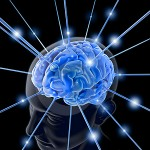 IBM construirá un cerebro humano artificial en 10 años