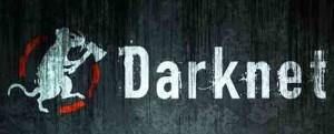 Darknet El lado oscuro de la red